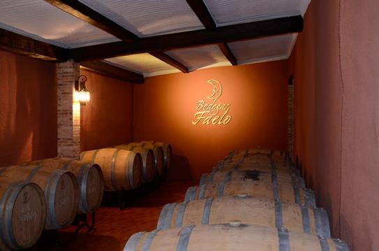 Viticultura en alicante museo e instalaciones bodegas faelo for Sala 8 y medio alicante